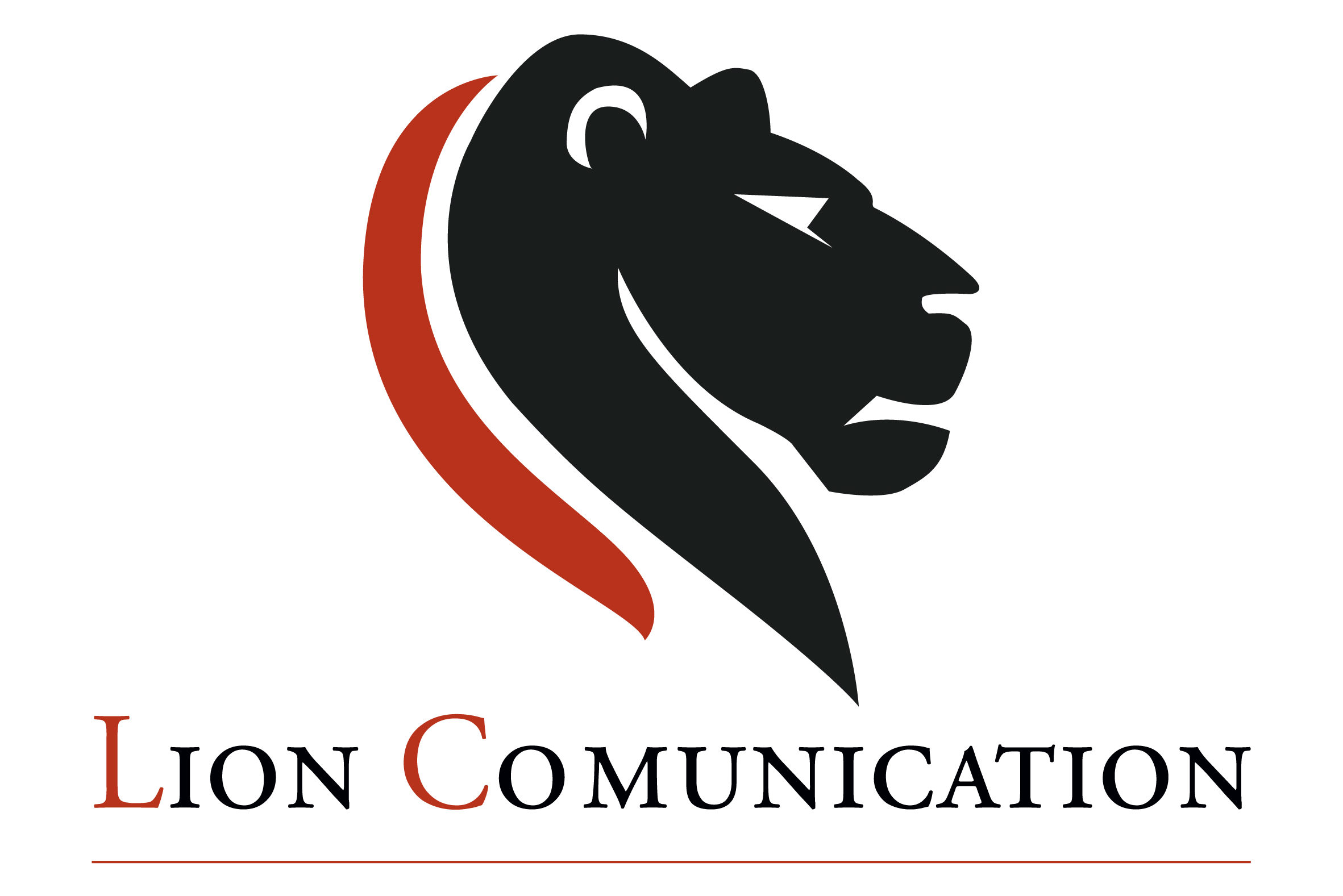 Lion Comunication S.r.l.s.